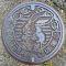 新潟県飯山市斑尾高原のマンホール